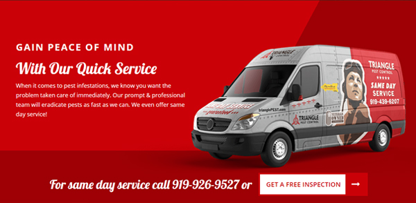 Triangle Pest Control Services